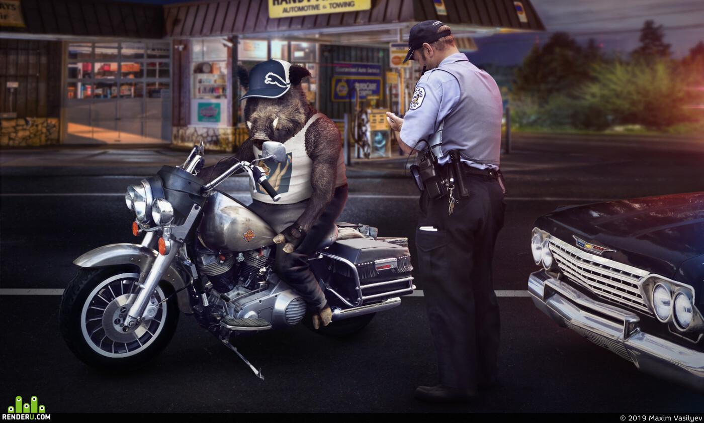 свин, полиция, мотоцикл, ночь, улица, машина