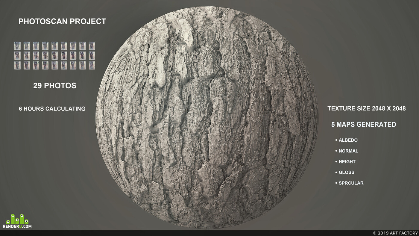 3D Bark - Photogrammetry Scan