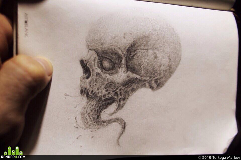 Horror skull, skull, dead