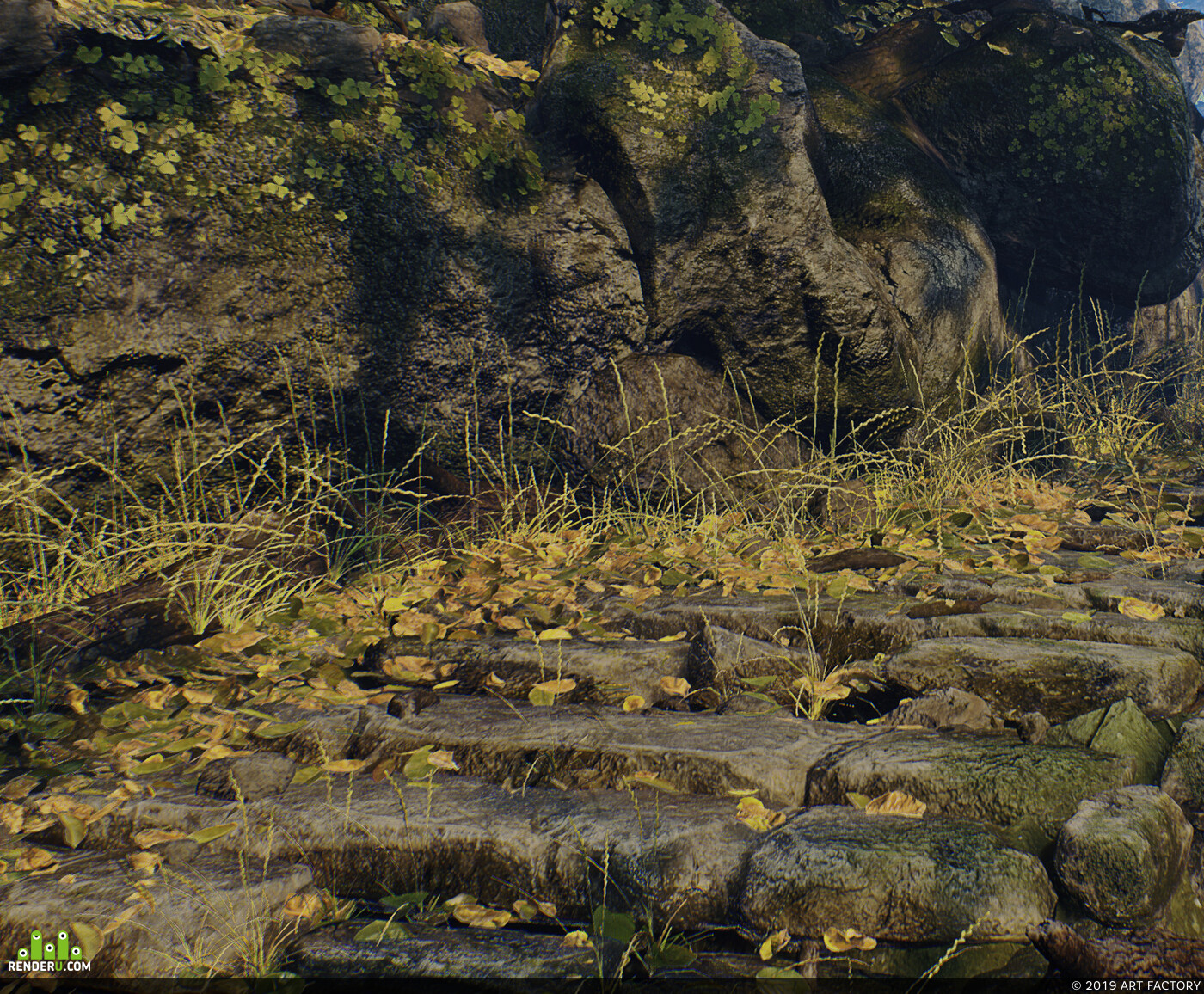 environment, forest, step, Stones, trees, sun, shade