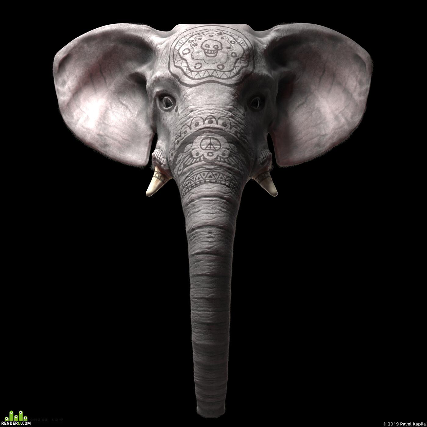 слоны, слон, антропоморфные