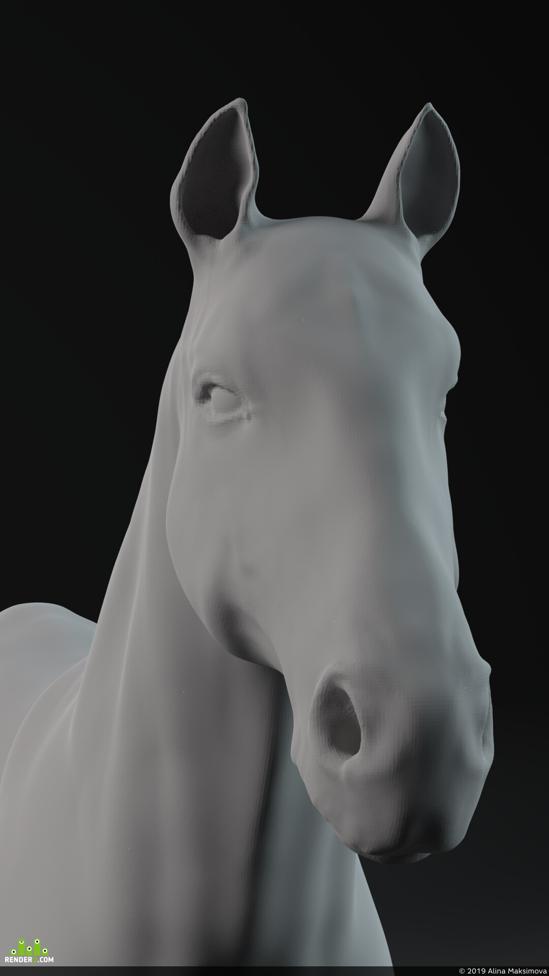 horse, animal