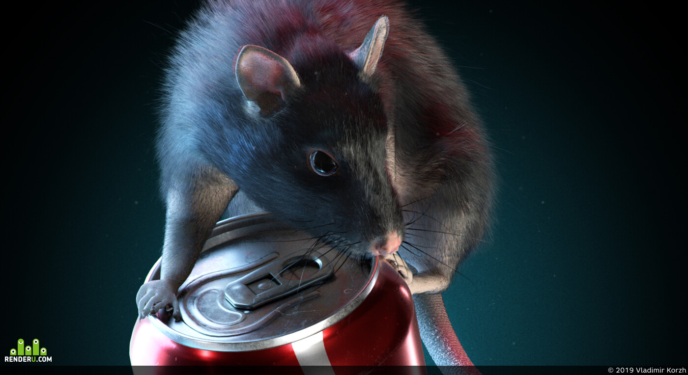 3d characher, Animals, can, rat, grooming, cgsculpt, lookdev