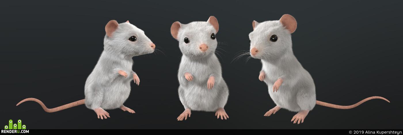тролль, портрет, мышь, животное, Сказка, История, фантазия, голова, Шерсть