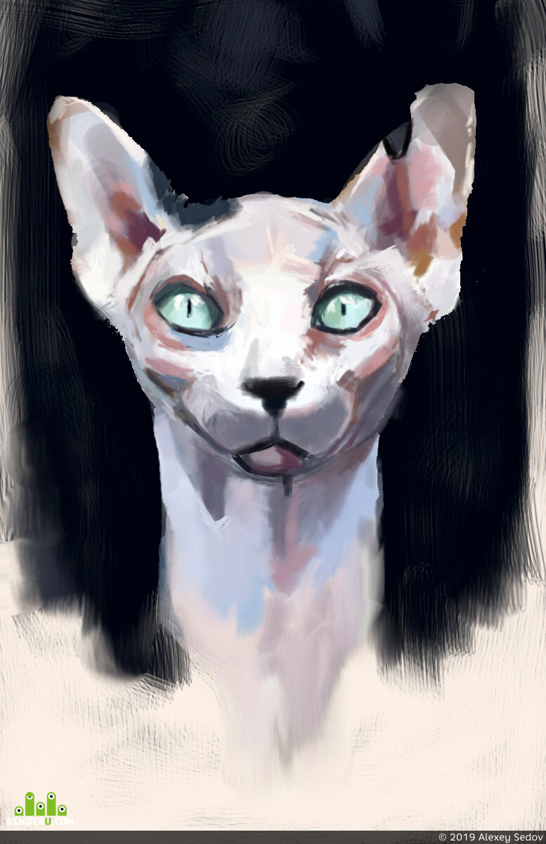 cat, DIGITALDRAWING, DIgital painting, animal