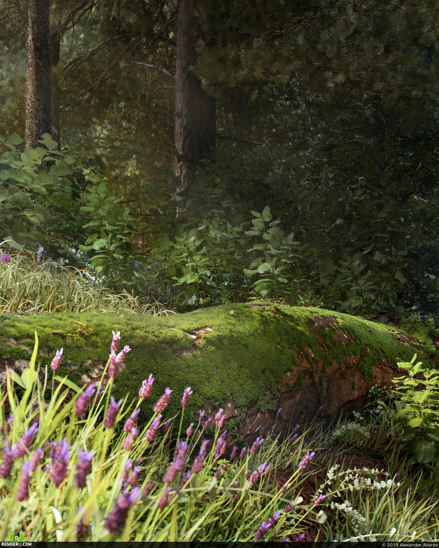 дом, частный дом, Загородный дом, Деревянный дом, Дом в лесу, Домик, дерево, лес, Куст