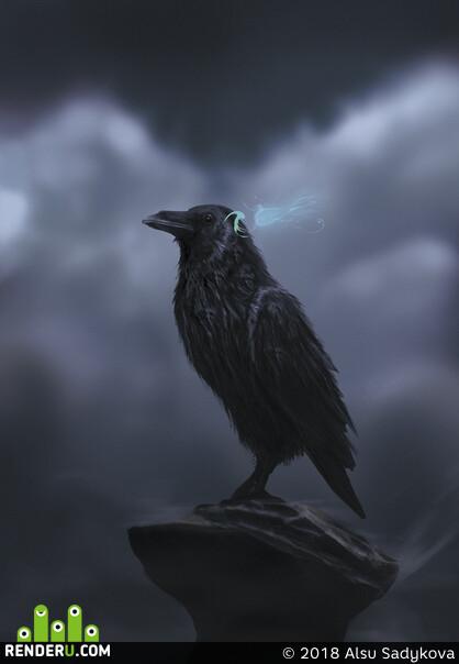 ворон, raven, art