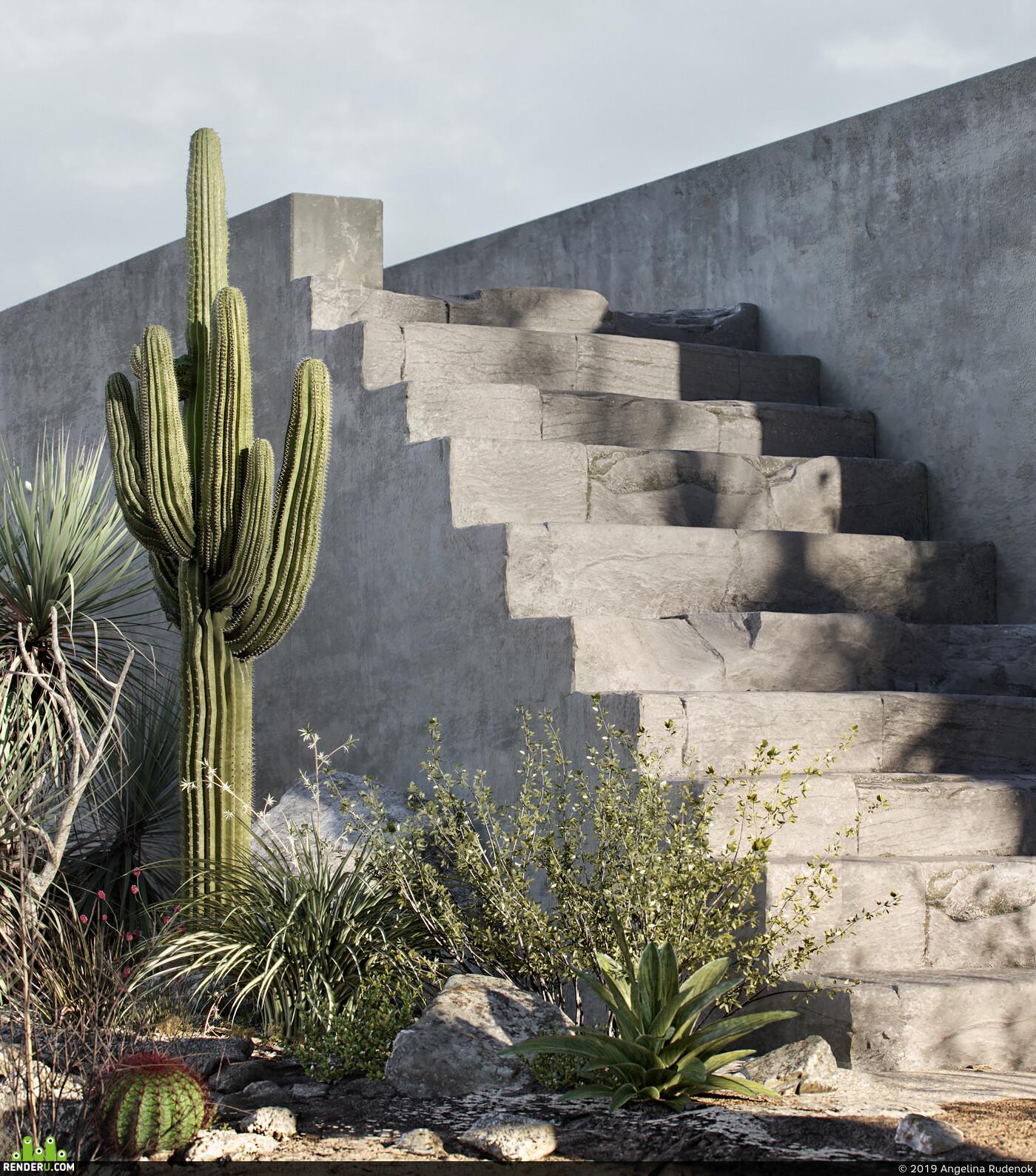 desert, Arizona, cactus, skull