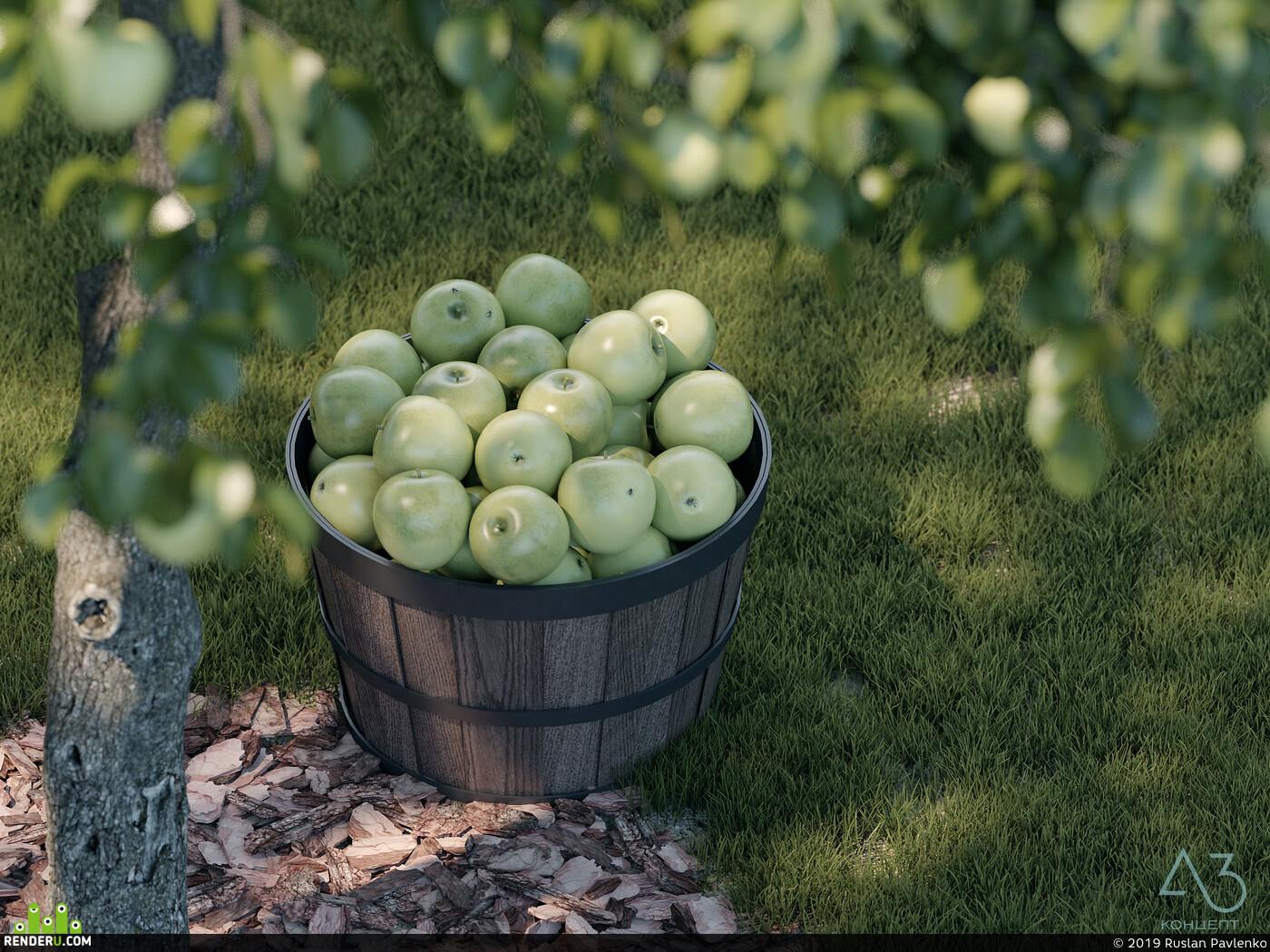 дизайн, ландшафт, сад, огород, яблоко, Кошка, Экстерьер, 3Dsmax, Vray