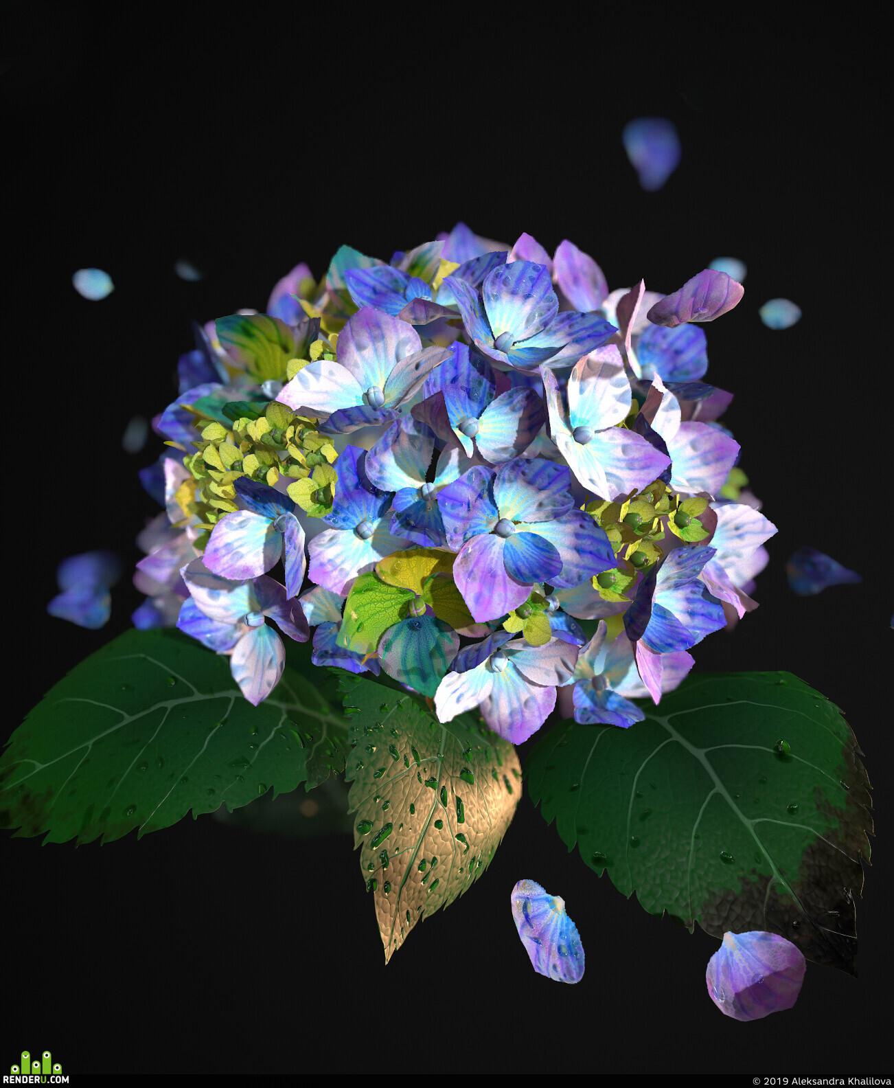 flowers, environment