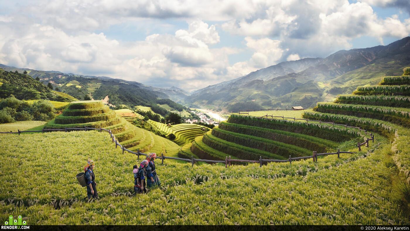 Природа, Экстерьер, Визуализация экстерьеров, Пейзаж, атмосфера, атмосферность, вьетнам, поле