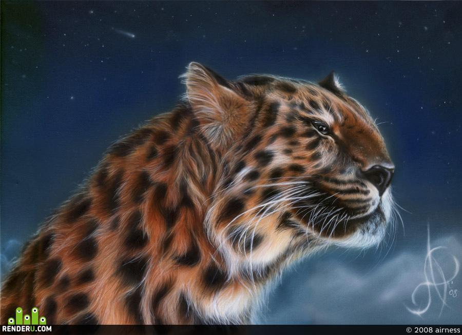 preview Leopard