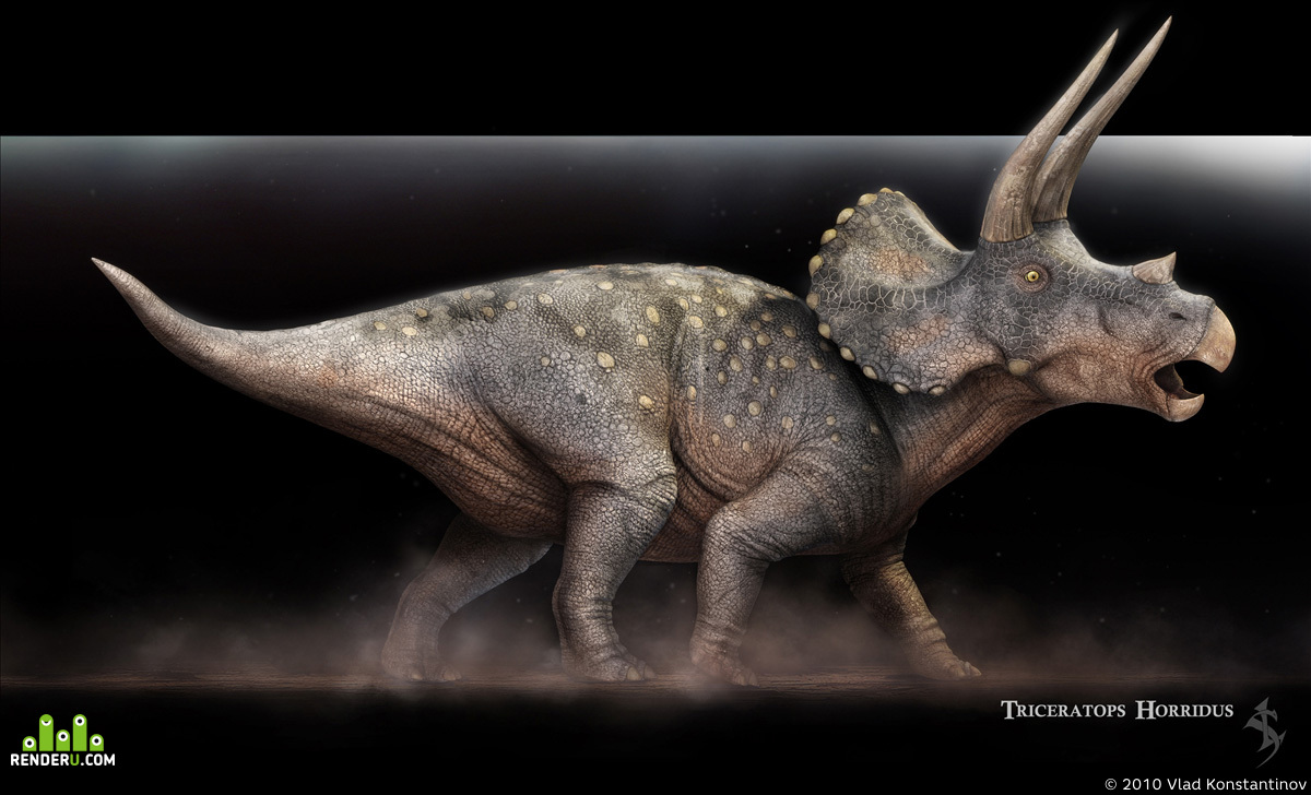 preview Triceratops horridus