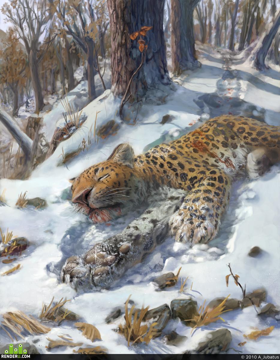 preview Mёrtvyiy dalnevostochnyiy leopard.