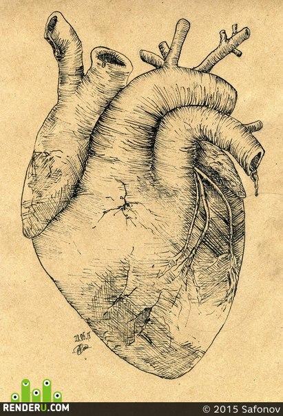 preview Сердце