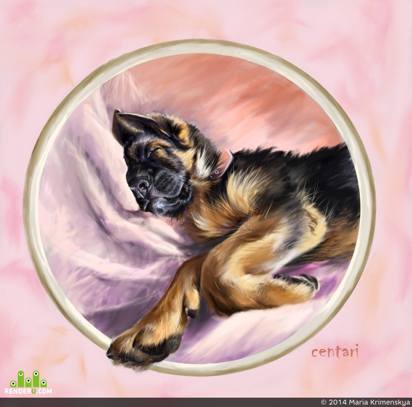 preview не будите спящую собаку