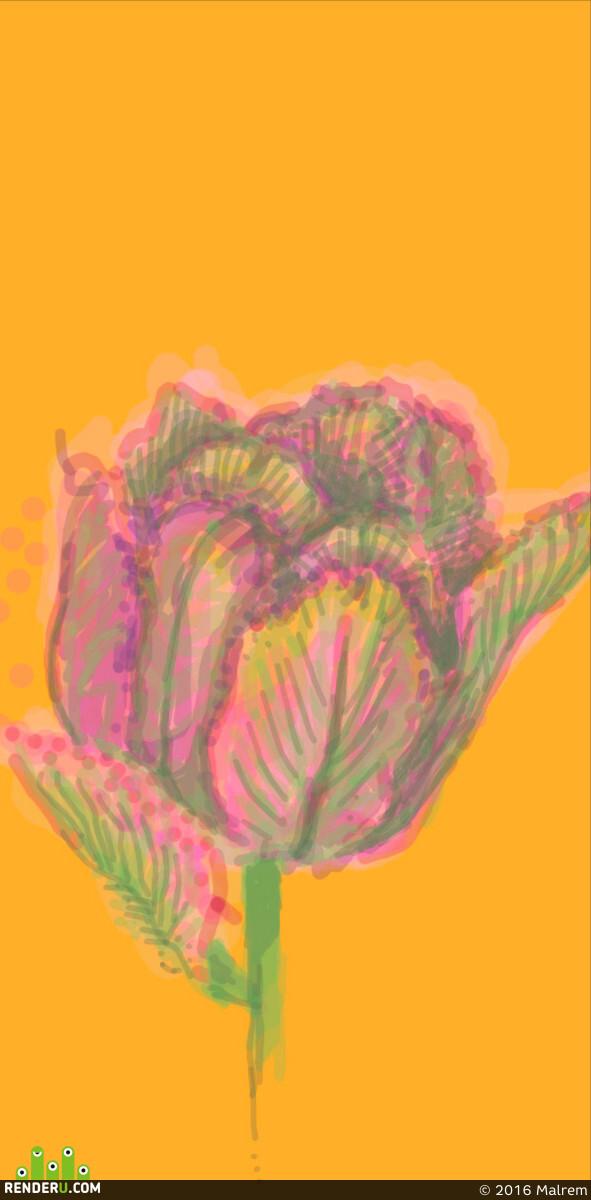 preview Тюльпан