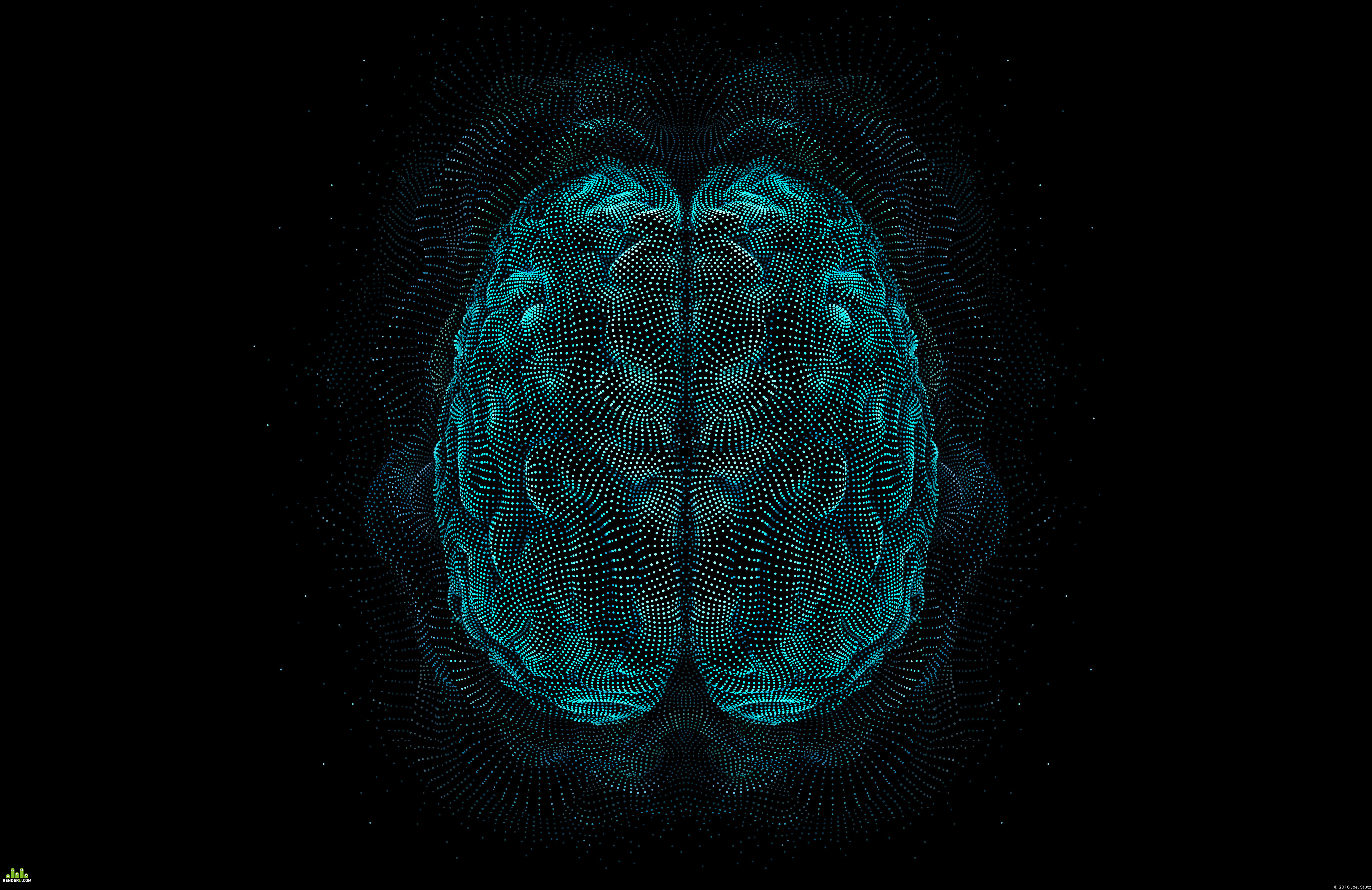 preview Abstract Brain