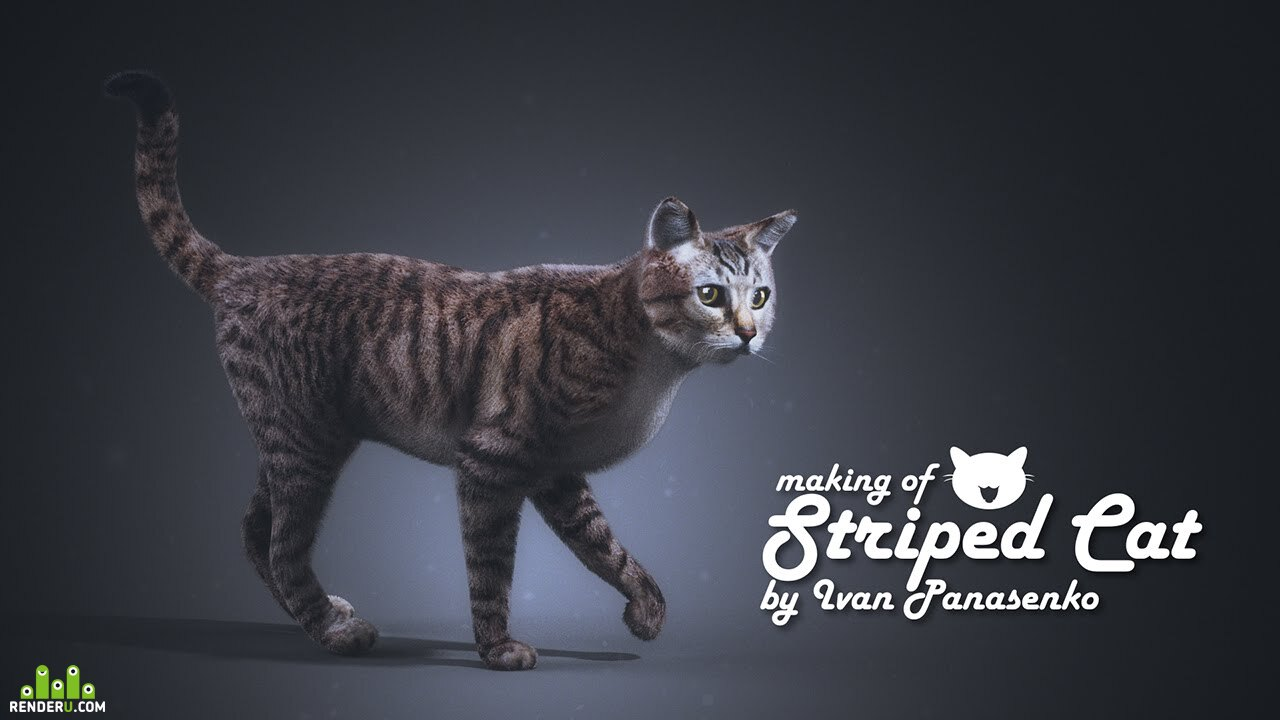 preview Cat - making of