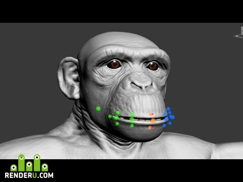 preview Шимпанзе. Сетап лица.