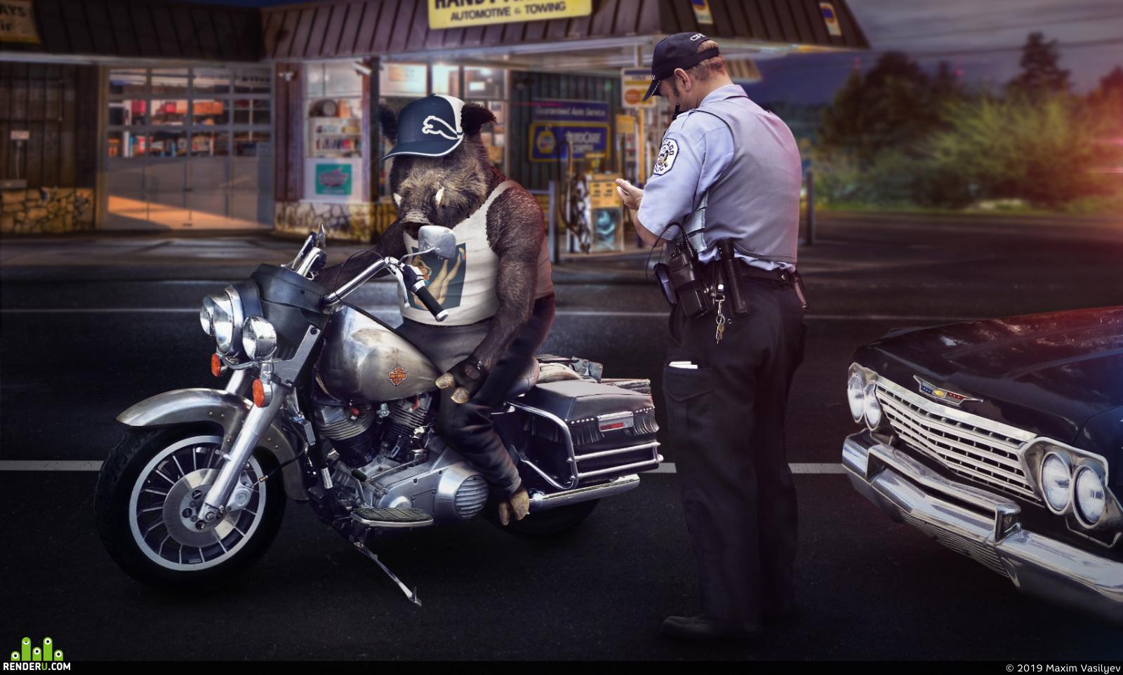 preview Boar biker