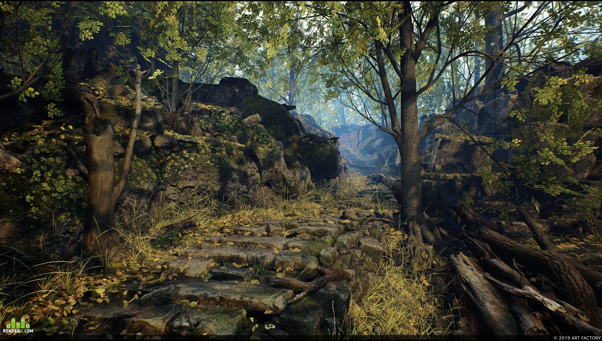 preview environment - forest, step, stones, trees, sun, shade