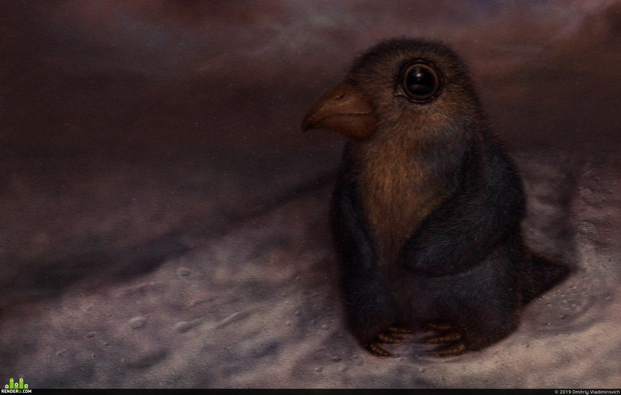 """preview """" Одинокая птица """"."""
