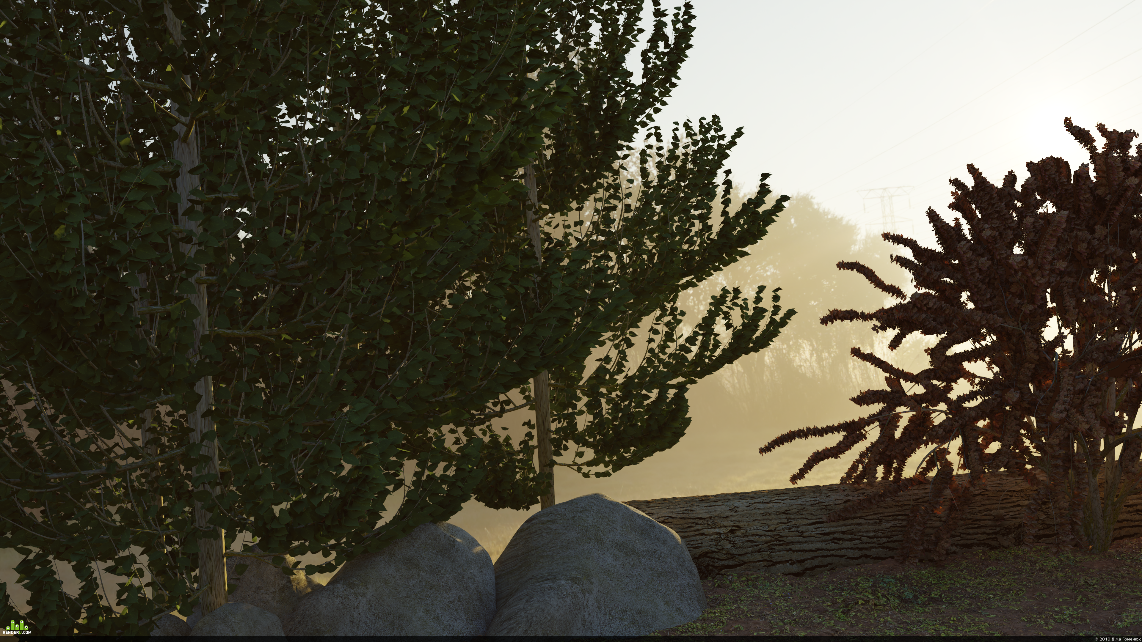 preview tree