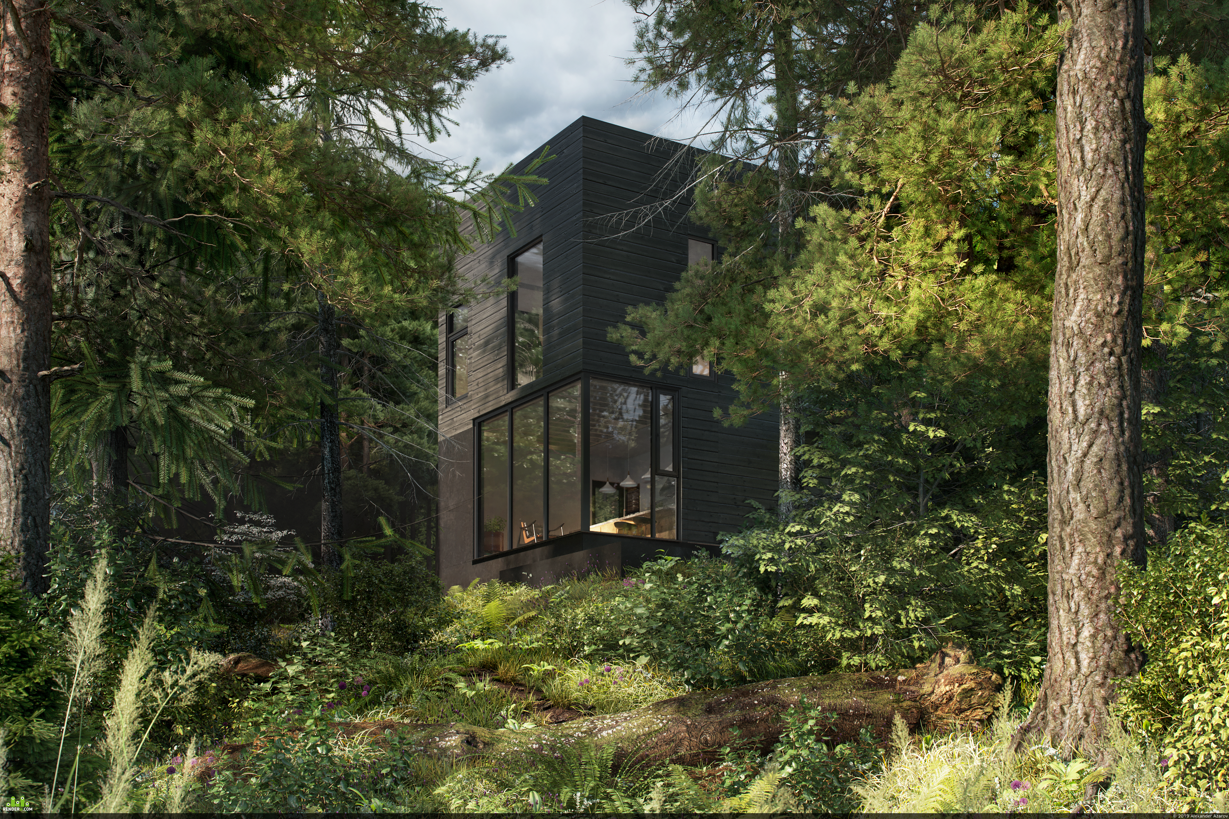 preview HOUSE IN THE FOREST