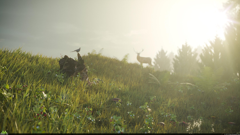 preview Landscape/ Forest glade