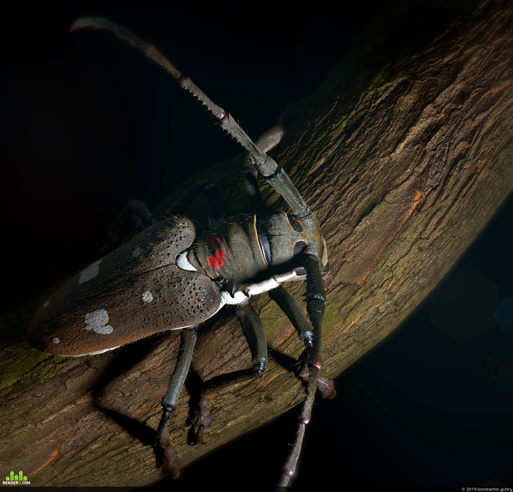 preview The Capricorn beetle
