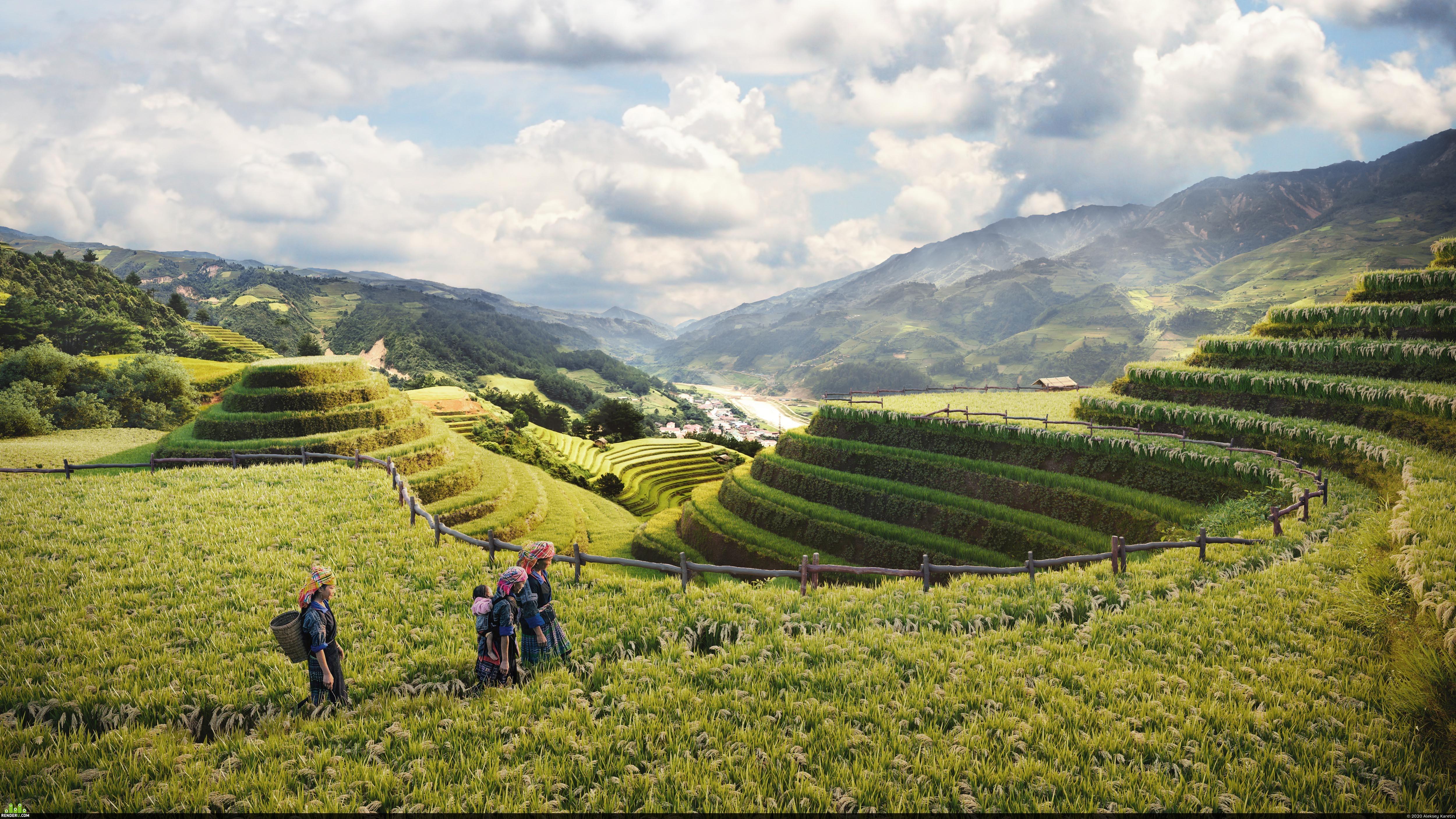 preview Рисовые поля