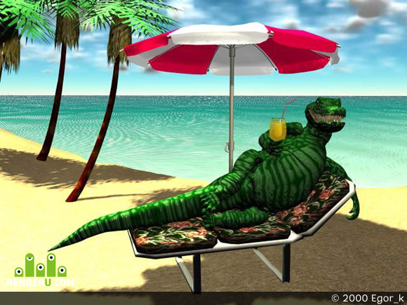 preview krokodil
