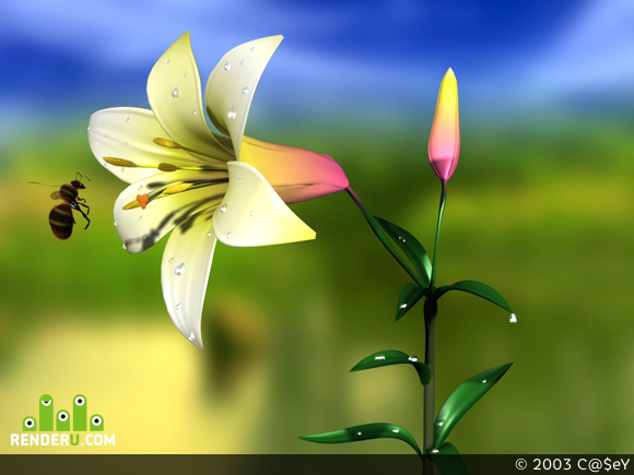 preview Perfect flower