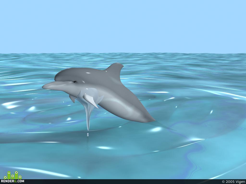 preview Serdtse okeana eto delfin