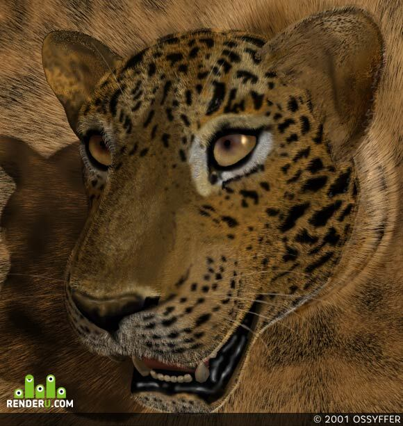 preview Gepard