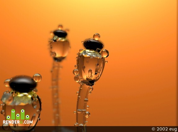 preview pilobolus crystallinus