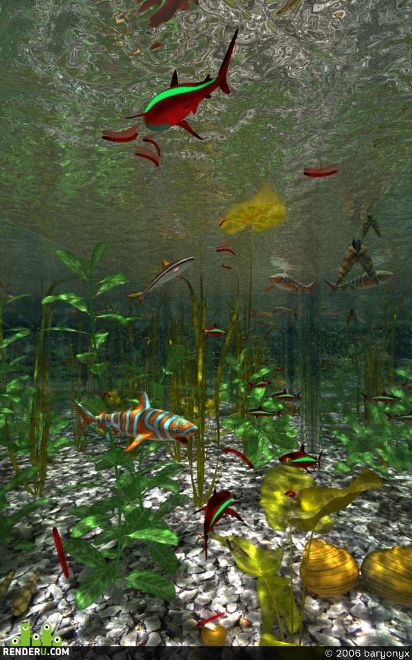 preview Ryibki akvariumnyie.