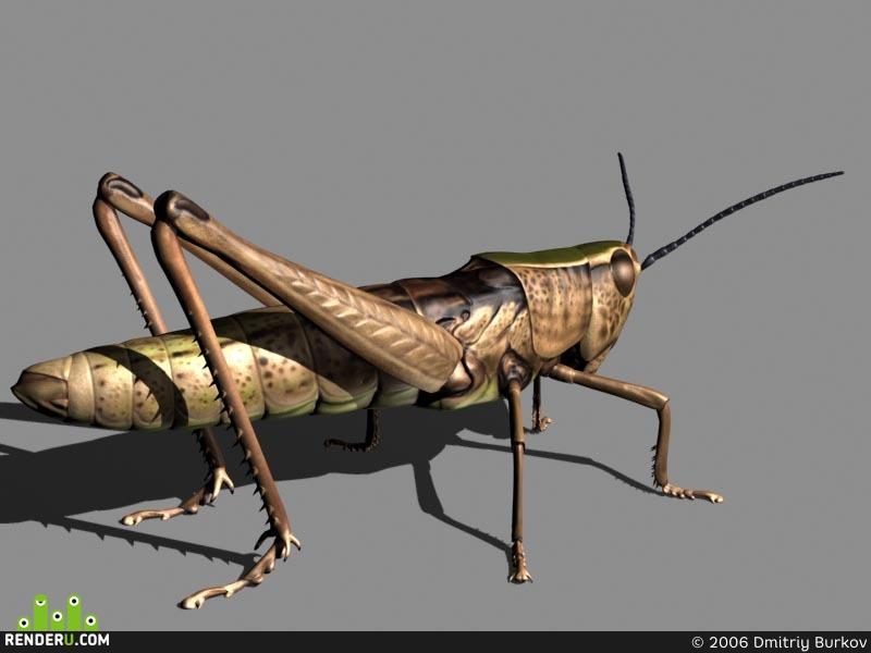 preview Grasshopper