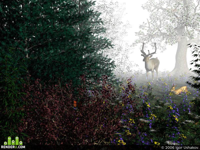 preview Utrenniy les.