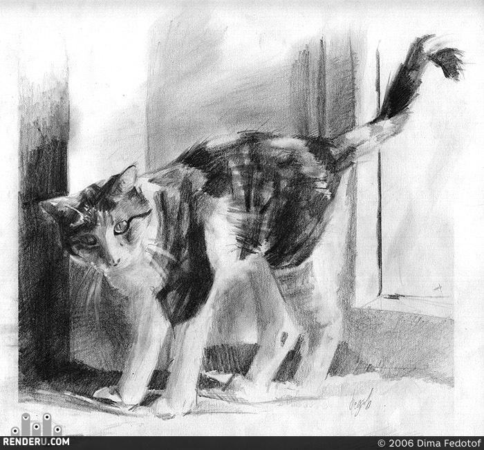 preview Набросок кошки