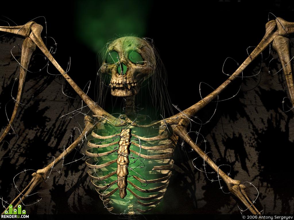 preview Skull
