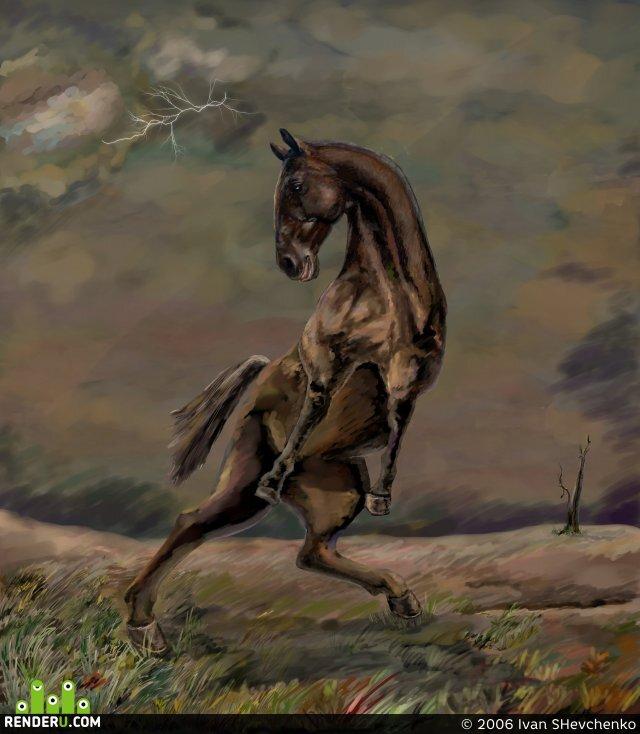 preview Лошадь, испуганная грозой
