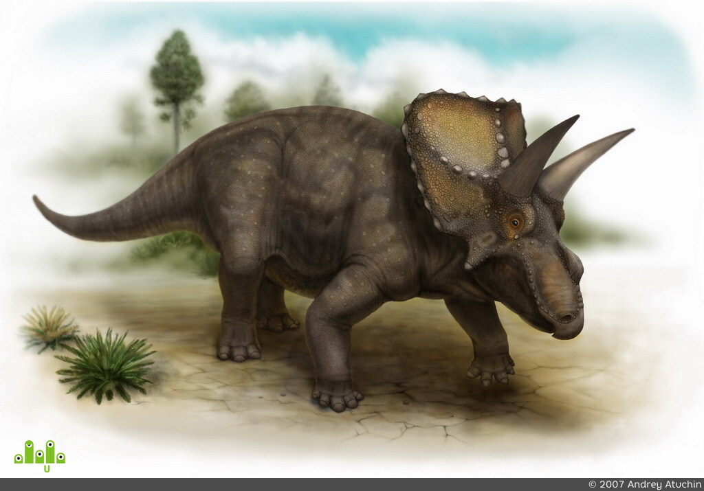 preview Diceratops