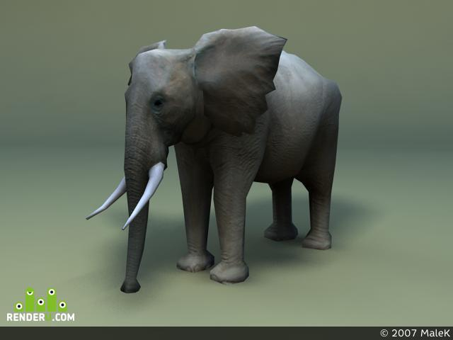 preview Elephant