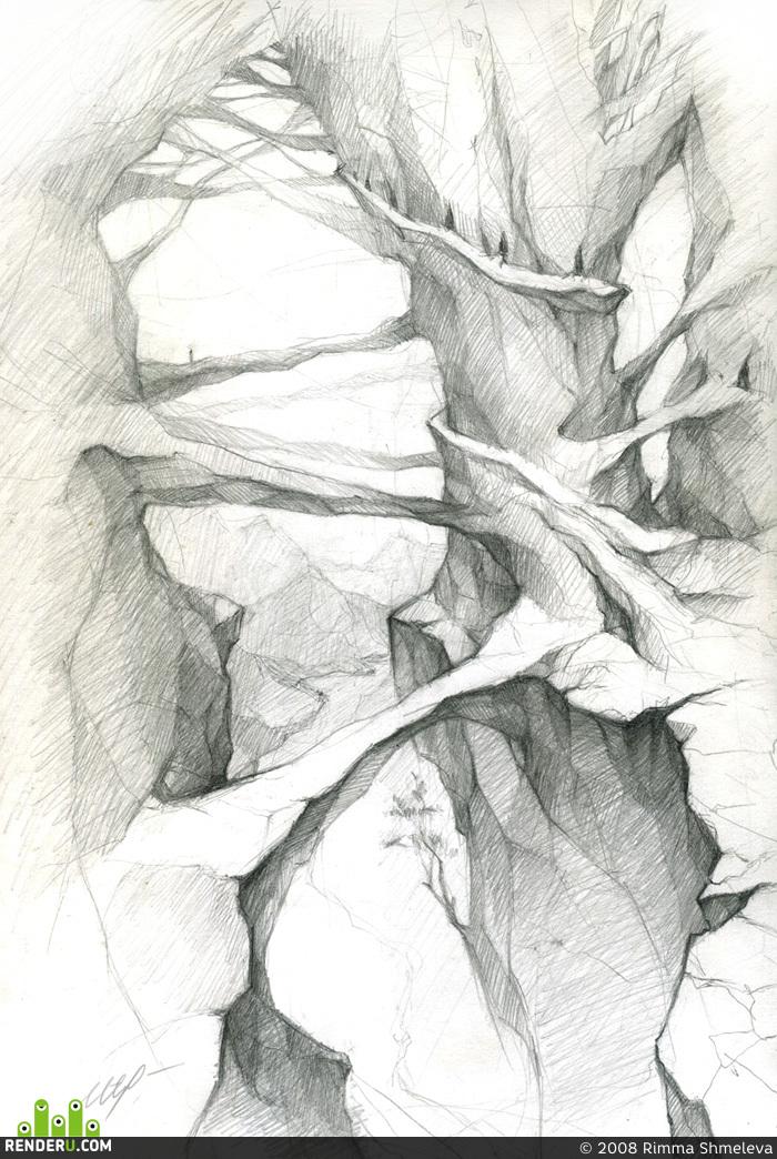 preview Скалистые деревья