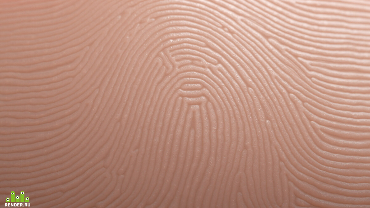 popup-closeup_loop_fingerprint_skin_default.jpg
