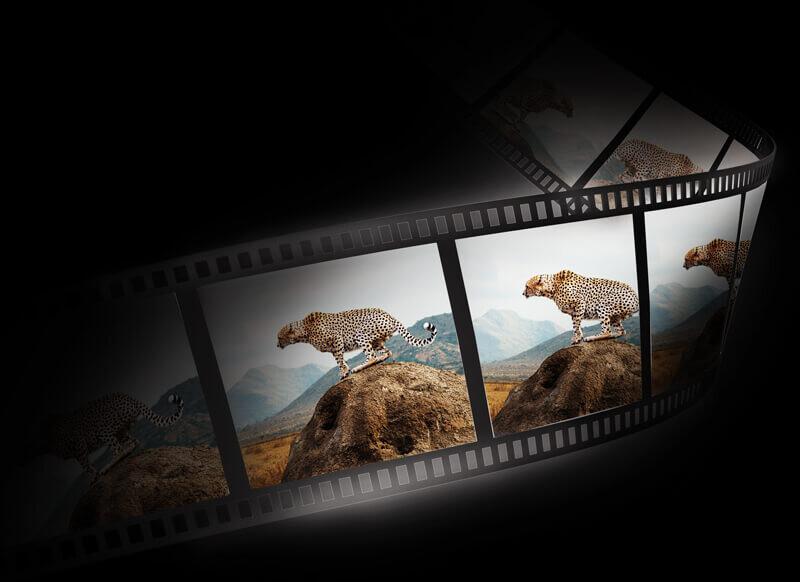 videoframe-format.jpg