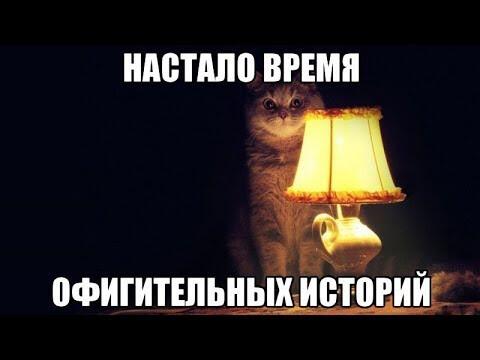 pic_00.jpg
