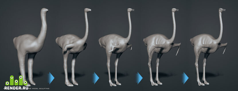 'Somali Ostrich', base model sculpting.